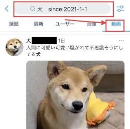 Twitterにて動画のみ検索する手順